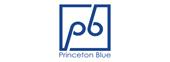 Princeton Blue
